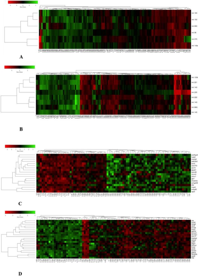 Analysis of Differential Expression of microRNAs and Their Target Genes in Prostate Cancer: A Bioinformatics Study on Microarray Gene Expression Data.